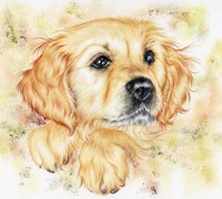 Brockie Fine Art Print