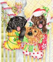 Christmas Stocking Fillers Fine Art Print