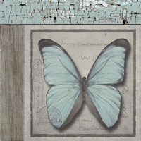 Butterfly Blue Fine Art Print