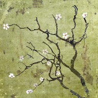 Cherry Tree I Fine Art Print