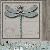 Dragonfly Blue Fine Art Print