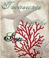Treasures of the Sea Fine Art Print
