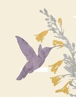 Hummingbird and flowers Fine Art Print