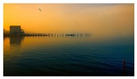 Morning Comes on the Bay Fine Art Print