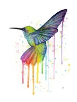 Rainbow Hummingbird Fine Art Print