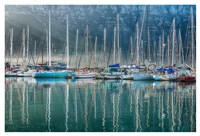 Hout Bay Harbor, Hout Bay South Africa Framed Print