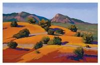 Juniper Hills Fine Art Print