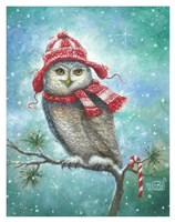 HOOT this Christmas! Fine Art Print