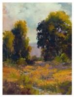 Eucalyptus Path Fine Art Print