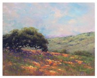 Poppy Hill Fine Art Print