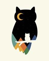 Eye On Owl Fine Art Print