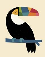 Rainbow Toucan Fine Art Print