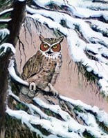 Great Horned Owl In Winter Fine Art Print