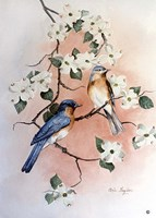 Bluebirds and Dogwood Fine Art Print