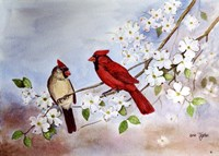 Cardinals and Dogwood Fine Art Print