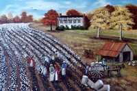 The Lincoln Cotton Field Fine Art Print