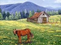 The Tobacco Barn Fine Art Print