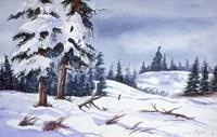 Snow Fine Art Print