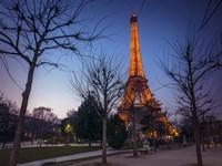Eiffel Lit Up Fine Art Print