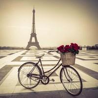 Bike Fine Art Print
