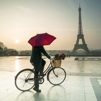 Bike & Red Umbrella Fine Art Print