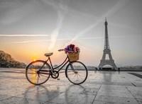 Bike in Paris Fine Art Print