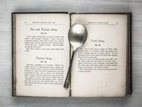 Book & Spoon 2 Fine Art Print