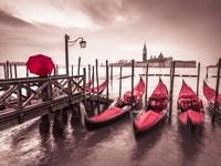 Red Gondolas Fine Art Print