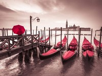 Red Gondolas Fine Art Print