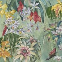 Jungle Orchids Fine Art Print