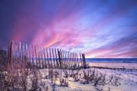 Beach Fences Fine Art Print