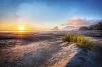 Dunes On The Pacific Coastline Fine Art Print