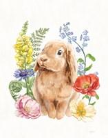 Sunny Bunny I FB Fine Art Print