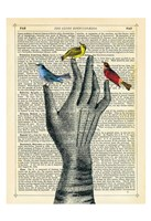 Bird in the Hand Fine Art Print