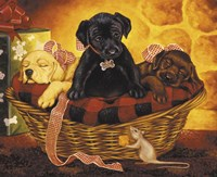 Lab Basket Fine Art Print