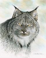 The Wild Side Fine Art Print
