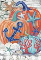 Coastal Pumpkins Fine Art Print