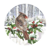 Winter Wonder Female Cardinal Fine Art Print