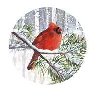 Winter Wonder Male Cardinal Fine Art Print