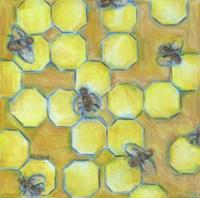 Honeycomb Fine Art Print