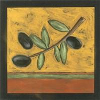 Tuscan Olive Branch I Fine Art Print