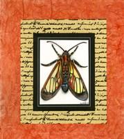 Bugs II Fine Art Print