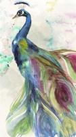 Peacock Dress Fine Art Print