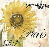 Paris Songs I Fine Art Print