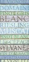 Alsace Wines Fine Art Print