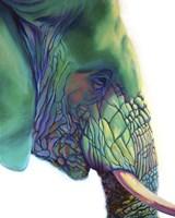 Blue Mountain Fine Art Print