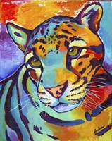 Clouded Leopard Fine Art Print