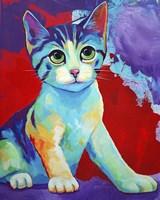 Colorful Kitten Finningan Fine Art Print