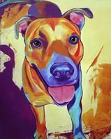 Kelsea Dog Fine Art Print