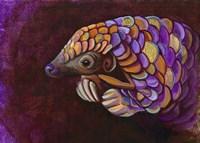 Pangolin Fine Art Print
